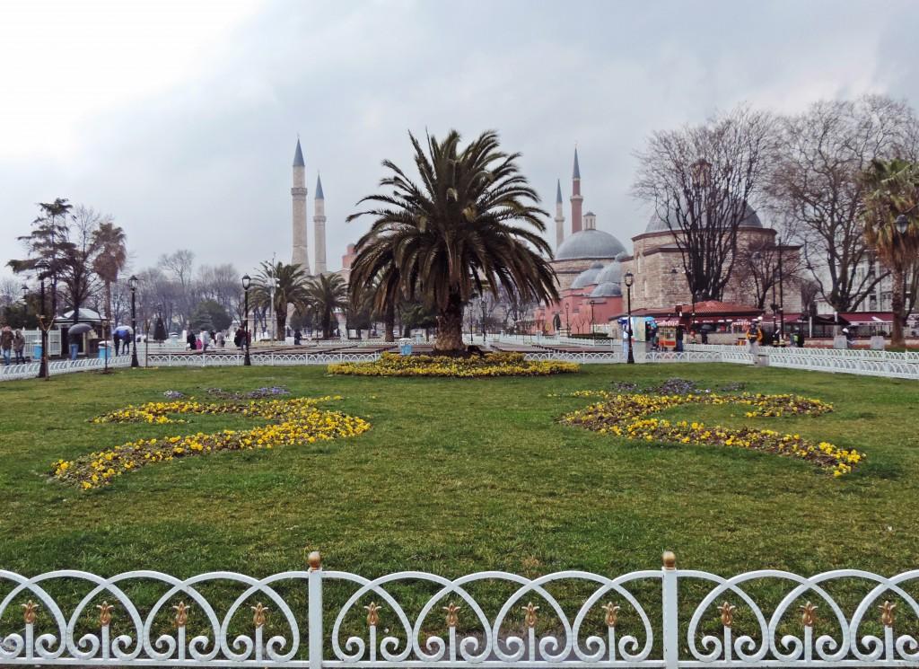 Blick auf Palme vor Hagia Sophia