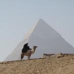 Mann auf Kamel